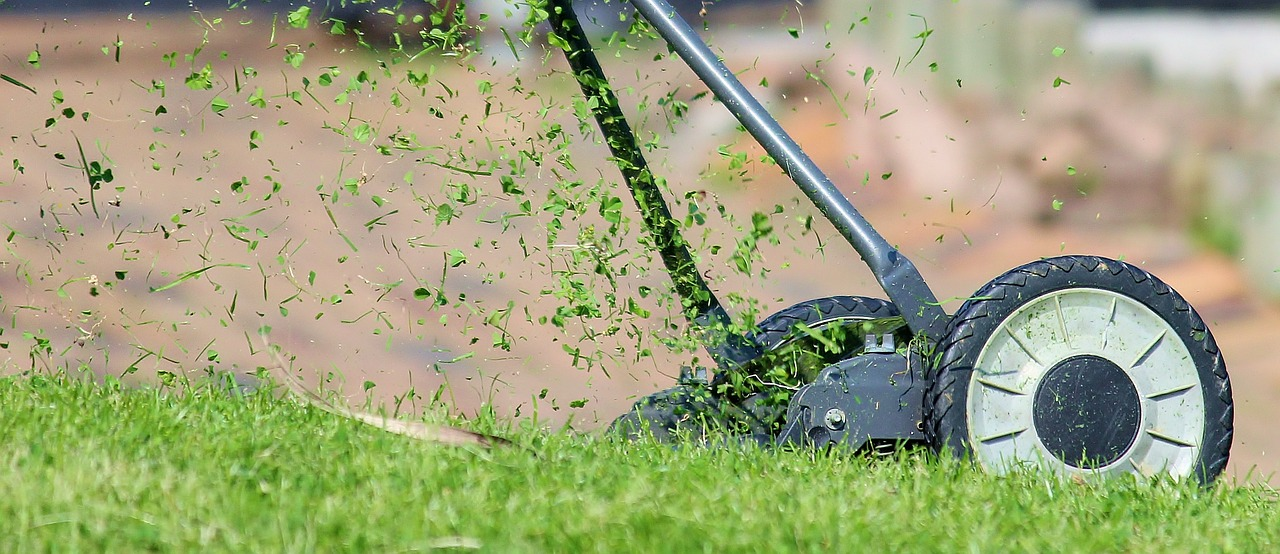 Spring lawn care schedule